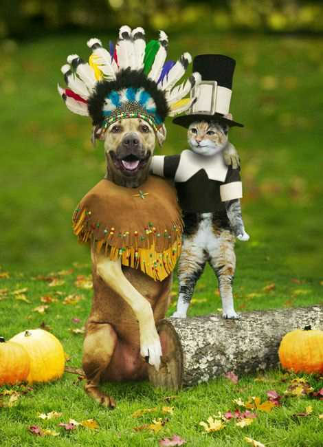 new blog 1 funny thanksgiving poems