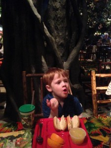 Avery eats hot dogs and stares at gorillas.